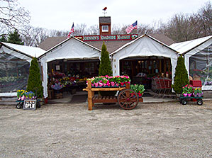 Johnson's Roadside Farm Market